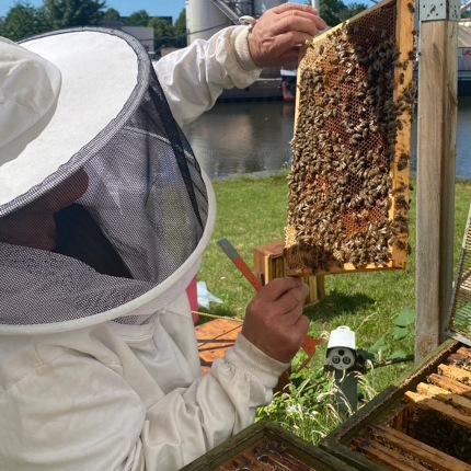 Honigernte bei L.W.C. Michelsen